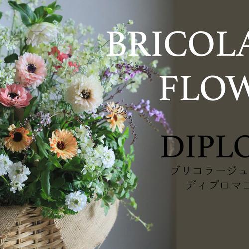【Diploma 東京】華もみじディプロマコース