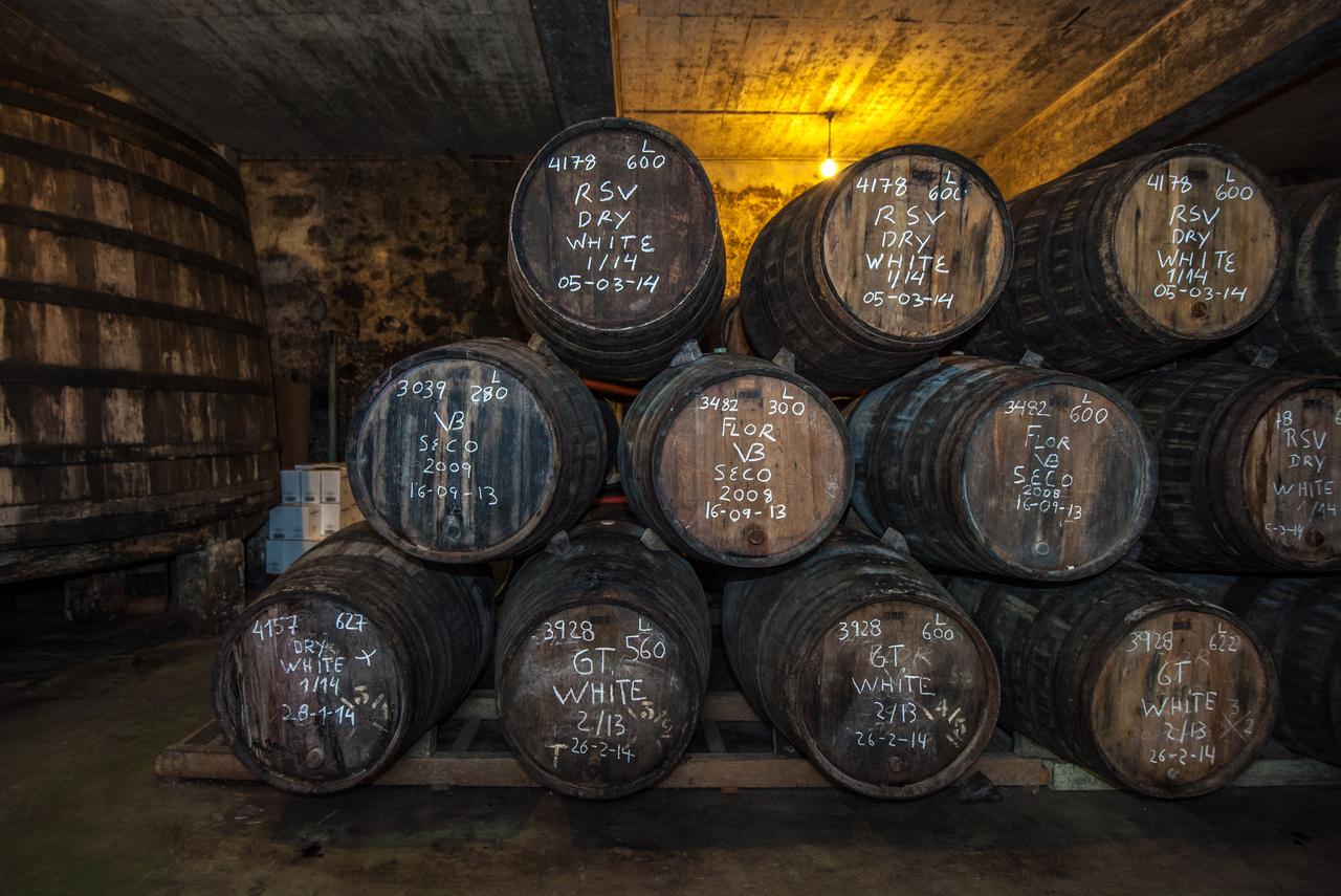 コート・デュ・ローヌ地方のワイン