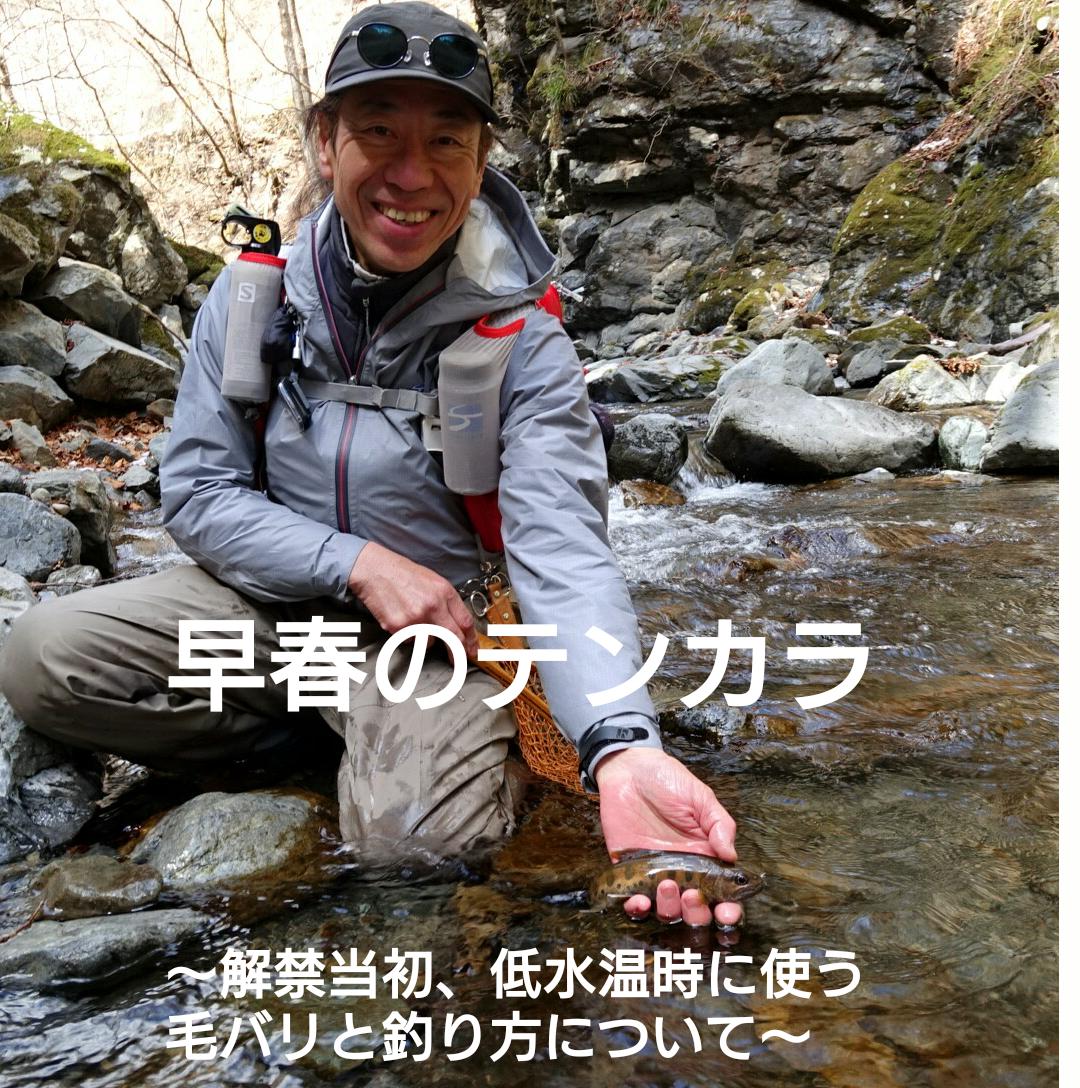 【2/27(木)】早春のテンカラ釣り ~解禁当初、低水温時に使う毛バリと釣り方~