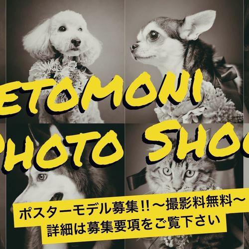 petomoniポスターモデル撮影会