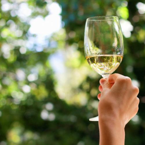 楽しく学べるワインレッスン 第1回「白ワインの基本品種」