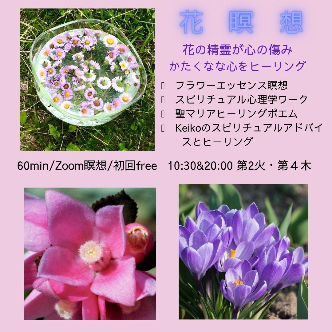 花瞑想 ー花の精霊が心の傷みをヒーリング・希望の光へガイドー