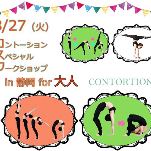[スペシャルWS in 静岡] 大人向け★コントーション<120分> / CONTORTION