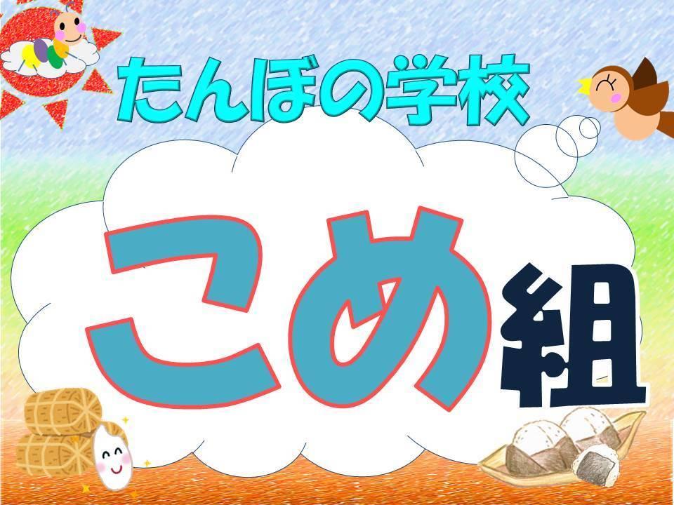 【2020年  たんぼの学校】こめ組