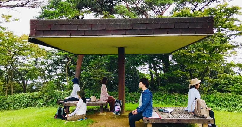 マヤカツ瞑想部