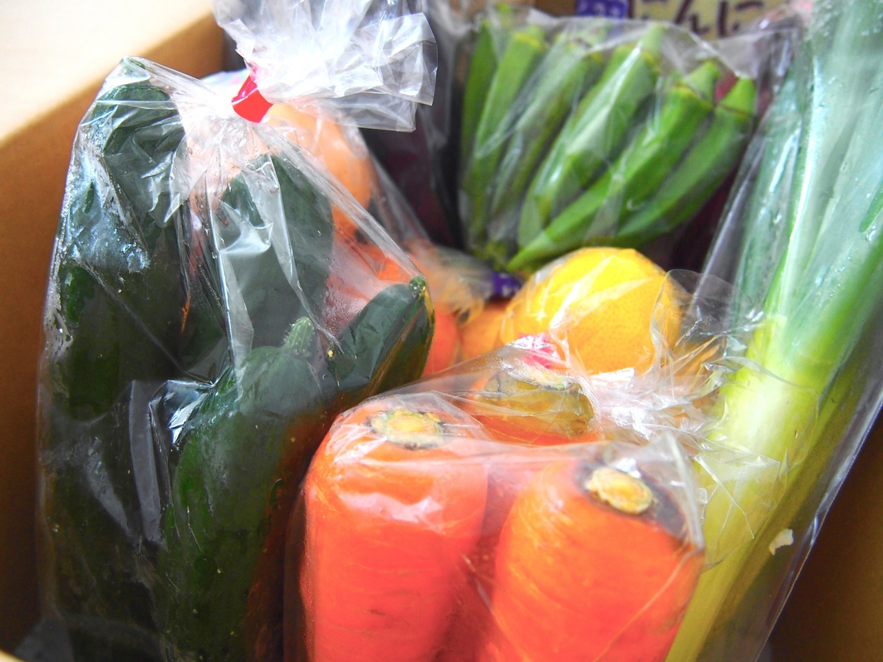 豊洲市場直送!野菜の詰め合わせプレゼント【杉並】2020年1月19日(日)