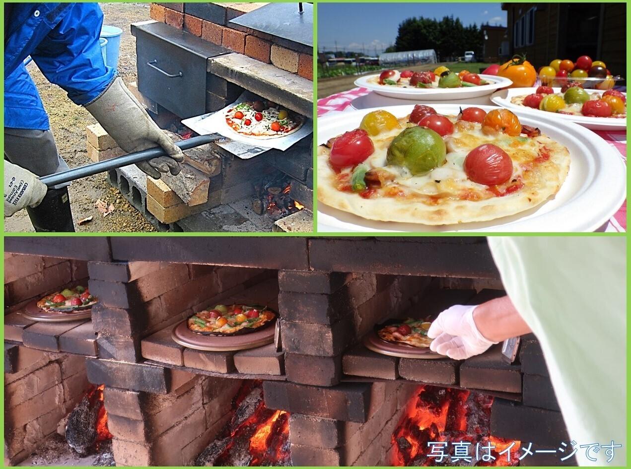 夏野菜を収穫して窯焼きピザを作ろう