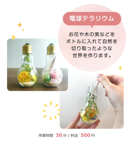 電球テラリウム作りワークショップ(7/6・7/7 宮古島会場)