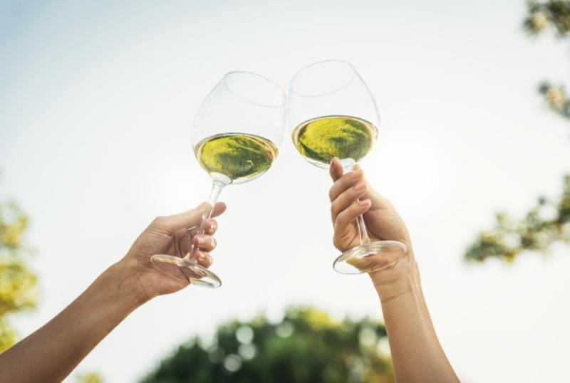 楽しく学べるワインレッスン 第2回「白ワインの珍しい品種」