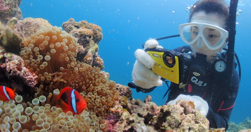 Cコース・幻の島上陸&体験ダイビング(AM)