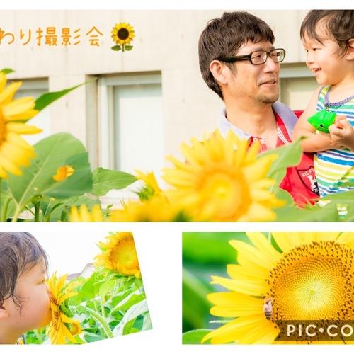 【ひまわり撮影会】7月20日(柏)・8月2日(柏)・8月1日(武蔵村山)