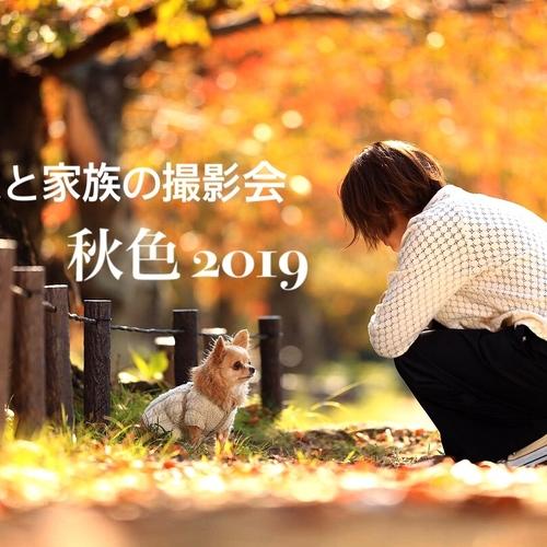 秋色愛犬撮影会2019