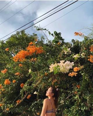 ヨガフェス💖 ハワイのエネルギーを感じる〜バイリンガル朝ヨガ