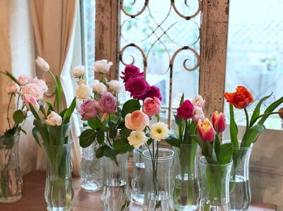 フラワーセラピーレッスン*お花の神秘的なエネルギーとライトラインゲージ*