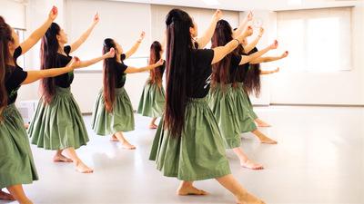【仙川スタジオ体験Lesson】未経験から踊るハワイアンフラ!仙川駅徒歩1分