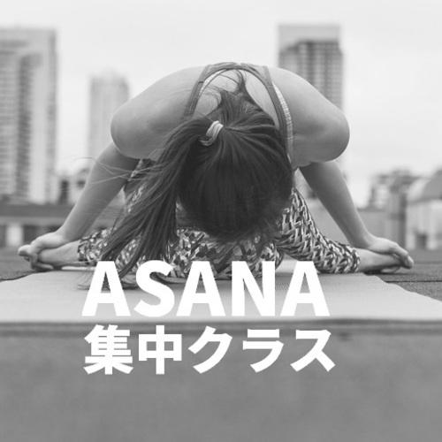 北浜/年パス限定/ASANA集中クラス/講師:Yasue/120分