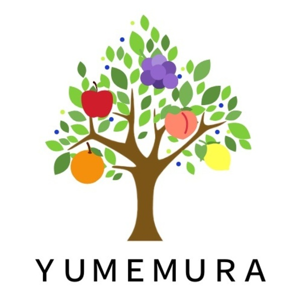 12月 10時~ 講座&Cafe~YUMEMURA~