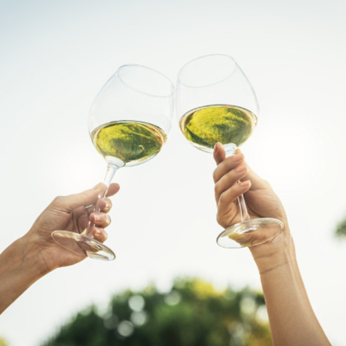 【11/16(土)、17(日)秋の味覚に合う白ワイン ~有名生産者の世界のシャルドネ飲み比べ~】