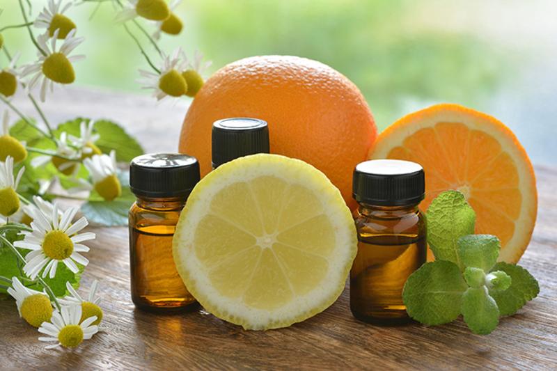 自由研究に!柑橘アロマの不思議