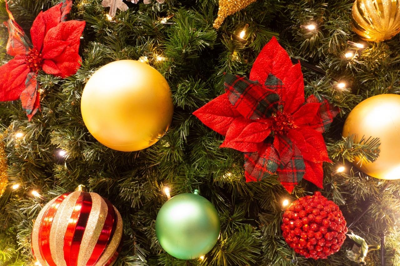 クリスマスツリーデコレーション【大田】2019年12月8日 |(日)