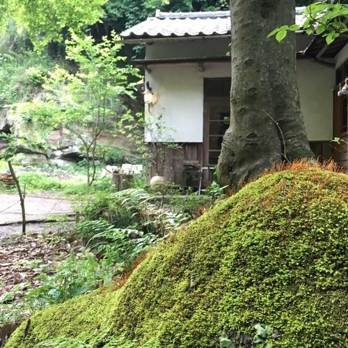薬膳ヨガ®︎カレッジ「鎌倉で学ぶ 薬膳レシピ&経絡ヨガ 3days」