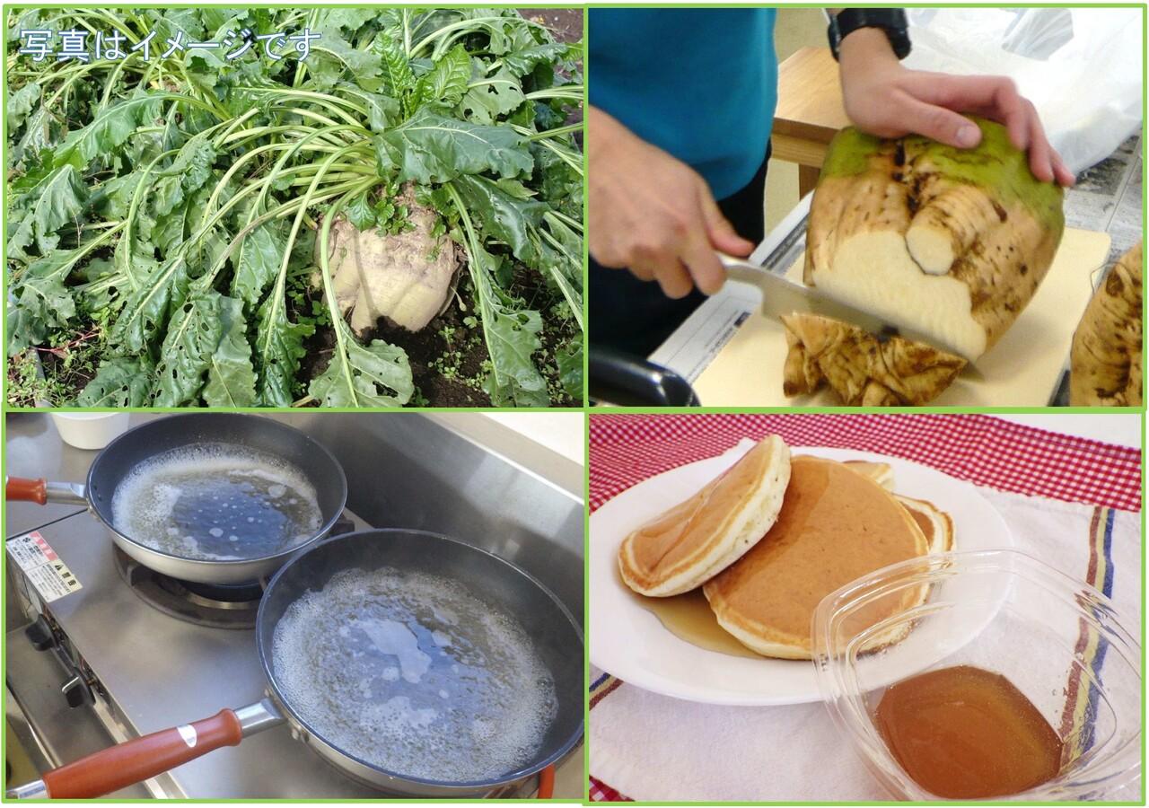 てん菜を収穫してシロップを作ろう(ホットケーキ付)