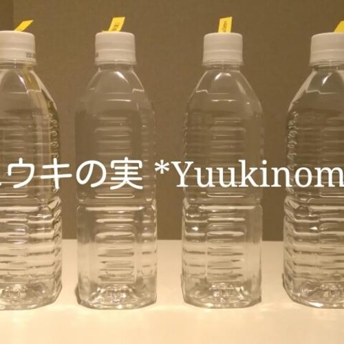 【 水へのエネルギー転写ワークショップ 】お試し企画