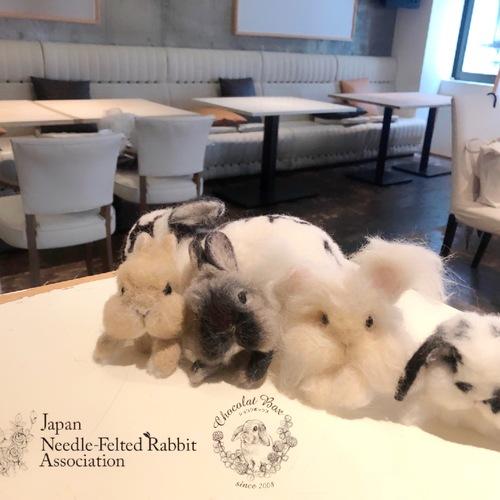 社)日本うさぎ羊毛フェルト協会一周年記念パーティー
