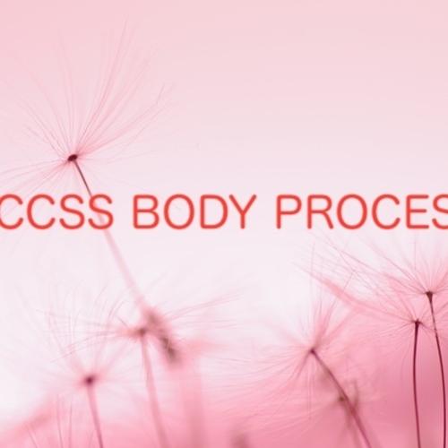 アクセスボディープロセス講座・体験・セッション