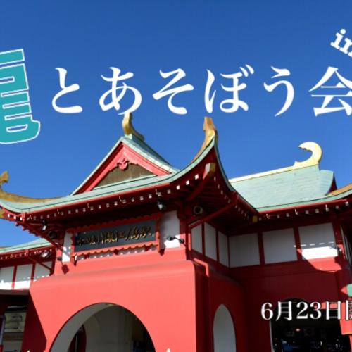 龍とあそぼう会〜in鎌倉