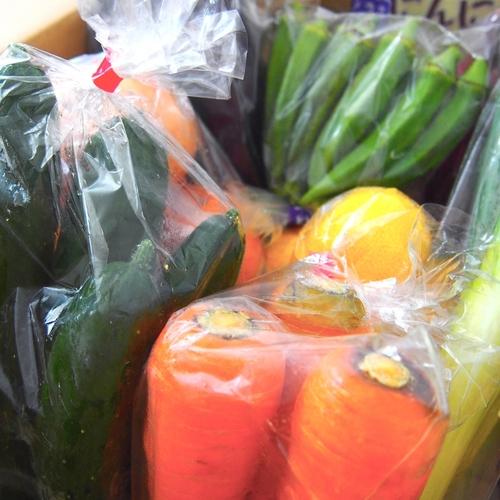 豊洲市場直送!野菜の詰め合わせプレゼント【足立】2020年1月26日(日)