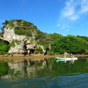沖縄マングローブカヤック なきじん海辺の自然学校