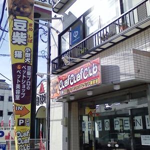 ouafouafclub