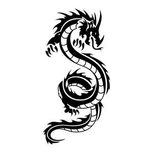 Dragon Aeroクラス!!