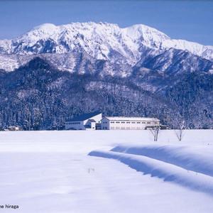 八海山大阪セミナー
