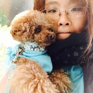 愛犬との柔らかな瞬間を提案する稀月な日々 - Carbuncle Style
