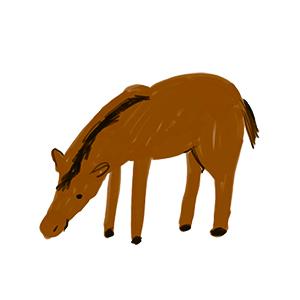 宝塚にホースセラピー牧場をつくる会「馬っこ」