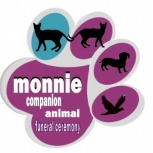 pet-monnie