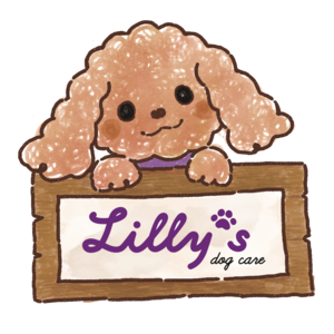 Lilly's Dog Care (ワンちゃんのオーラルケアー無麻酔歯石除去)