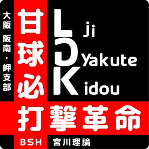 BSH 宮川理論 大阪 阪南・岬支部〜打撃革命〜