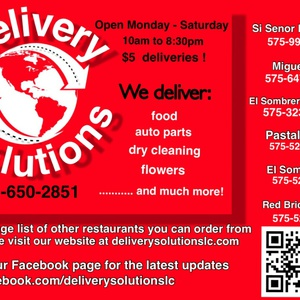 deliverysolutionslc