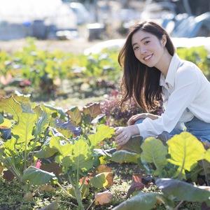 ベジコン(野菜×婚活)