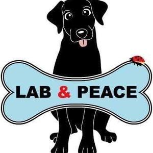 labpeace-dog