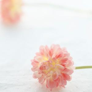 【稲沢市・一宮市】☆エステサロン☆綺麗と癒しのプライベート空間~Lani~