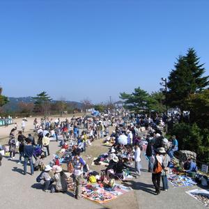 mayasan.jp