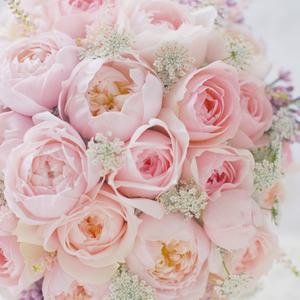FlowerStudioFLORAFLORA ちいさな花の教室